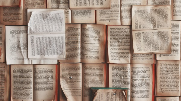 Open books in different shades of white and sepia are tacked to a wall.