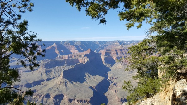A photo of the Grand Canyon, Arizona, from the South Rim. It is an early afternoon, with a deep blue sky. There are few clouds. The canyon shadows are grey and purple. The view is framed by deep green tree branches and brush.