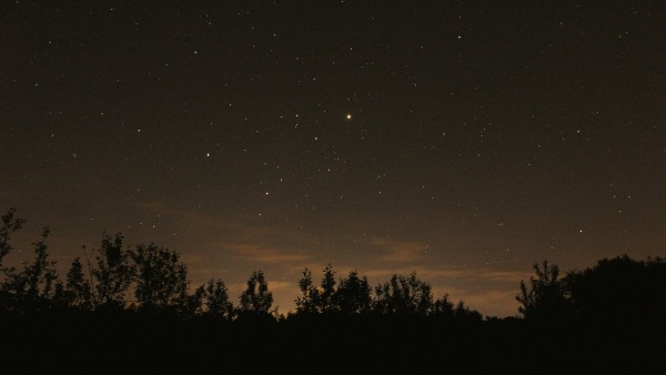 A night sky landscape photo: tree lines are dark-to-black at the bottom of the image; the horizon is deep orange/grey for light pollution; and in the top quadrant are stars.