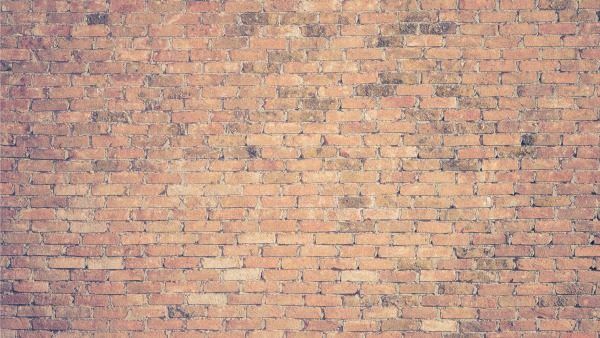 Close-up shot of brick wall.