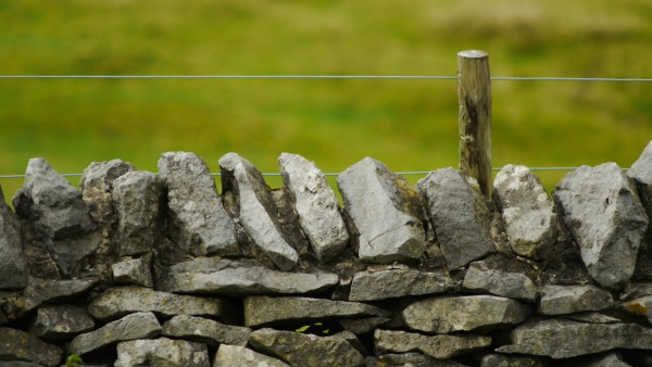 A stone fence in the foreground, yellow-green grass in the blurry background.